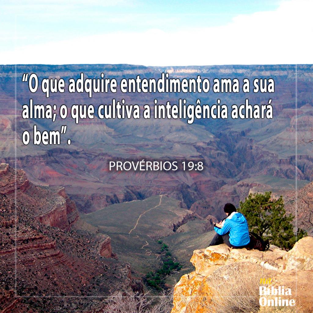 Provérbios 19 8